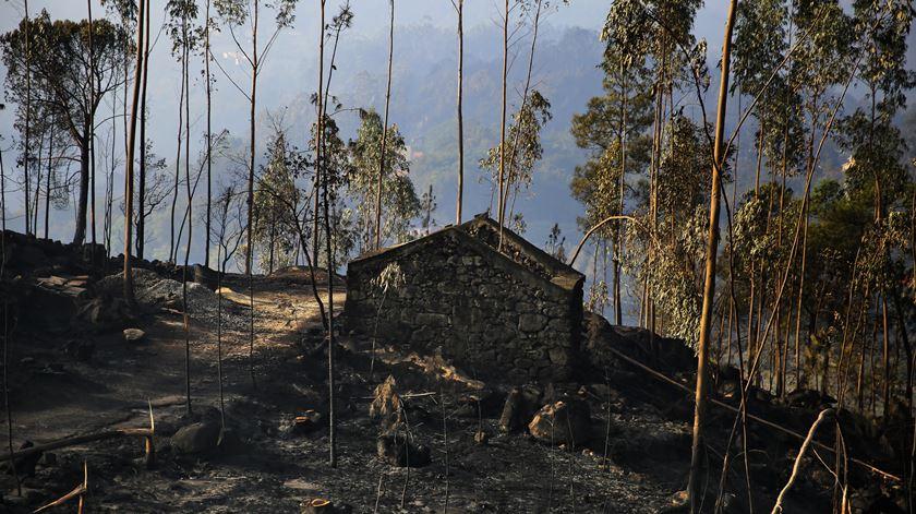 Zona alta da aldeia de Vila Nova, outra das extremidades afectadas pelo incêndio.