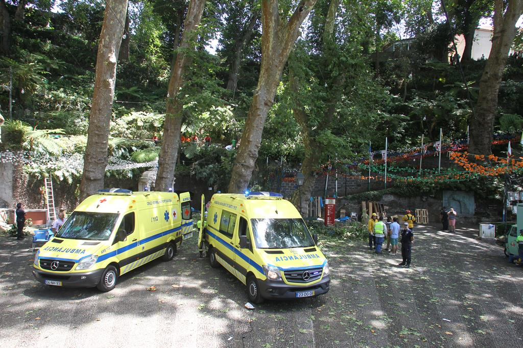 O incidente aconteceu no mesmo local onde, há quatro anos, morreram 13 pessoas na queda de uma árvore. Foto: Homem de Gouveia/Lusa