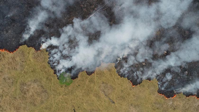 Incêndio na floresta da Amazónia. Foto: Ueslei Marcelino/Reuters