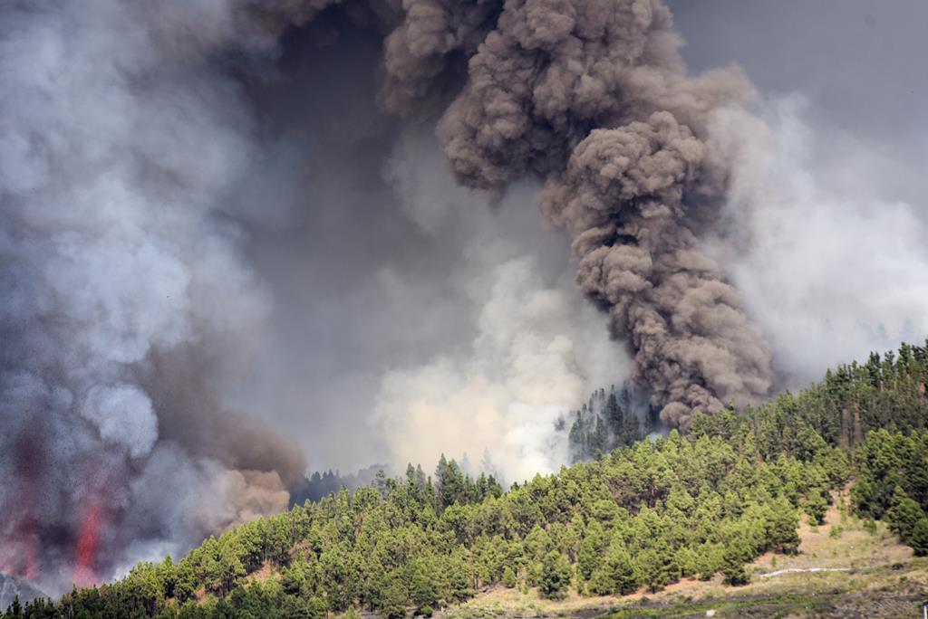 Há oito portugueses na zona afetada pela erupção do vulcão nas Canárias. Foto: Miguel Calero/EPA