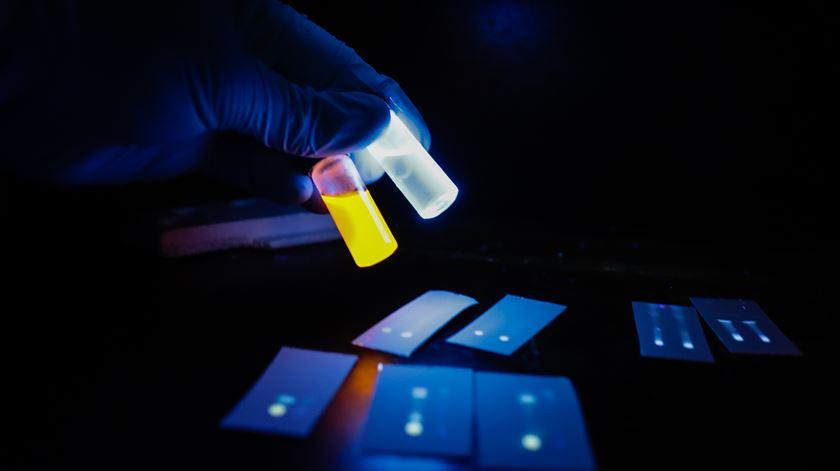 Aumento de investimento na investigação e desenvolvimento. Foto: Tiago Petinga/Lusa