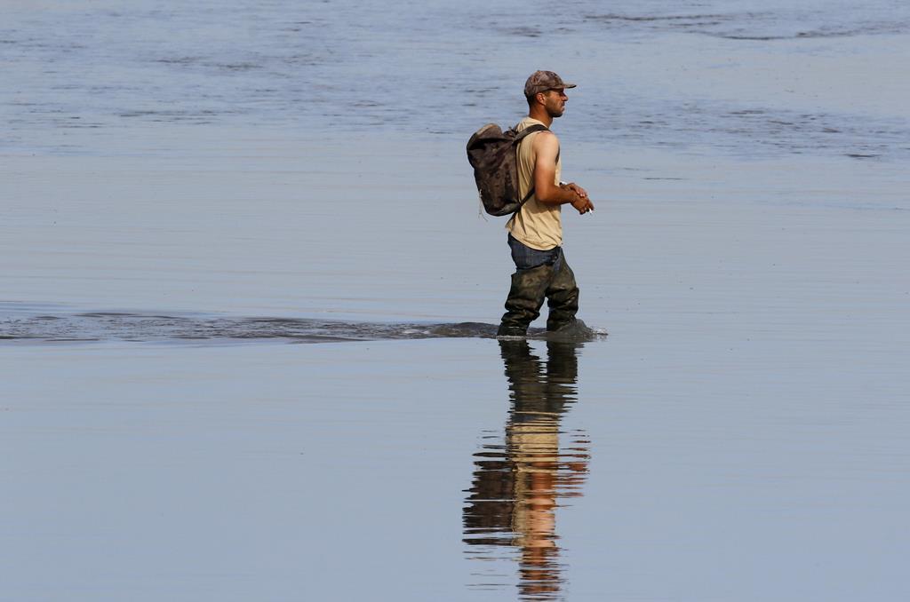 Apanha de bivalves no rio TejoFoto: Rui Minderico/Lusa