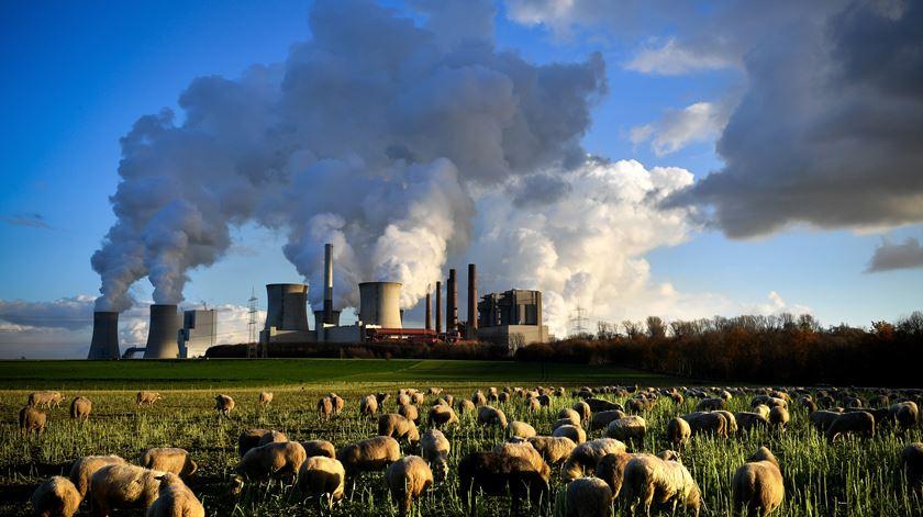 Foto: Sascha Steinbach/EPA