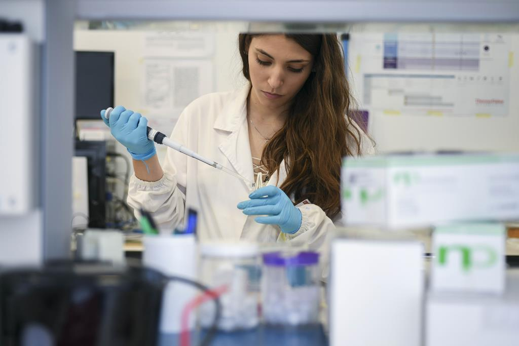 Medalhas de Honra destinam-se a incentivar as cientistas em início de carreira. Foto: Estela Silva/Lusa