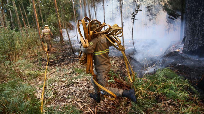 Incêndio em São Marcos, Albergaria-a-Velha (arquivo). Foto: Nuno André Ferreira/Lusa