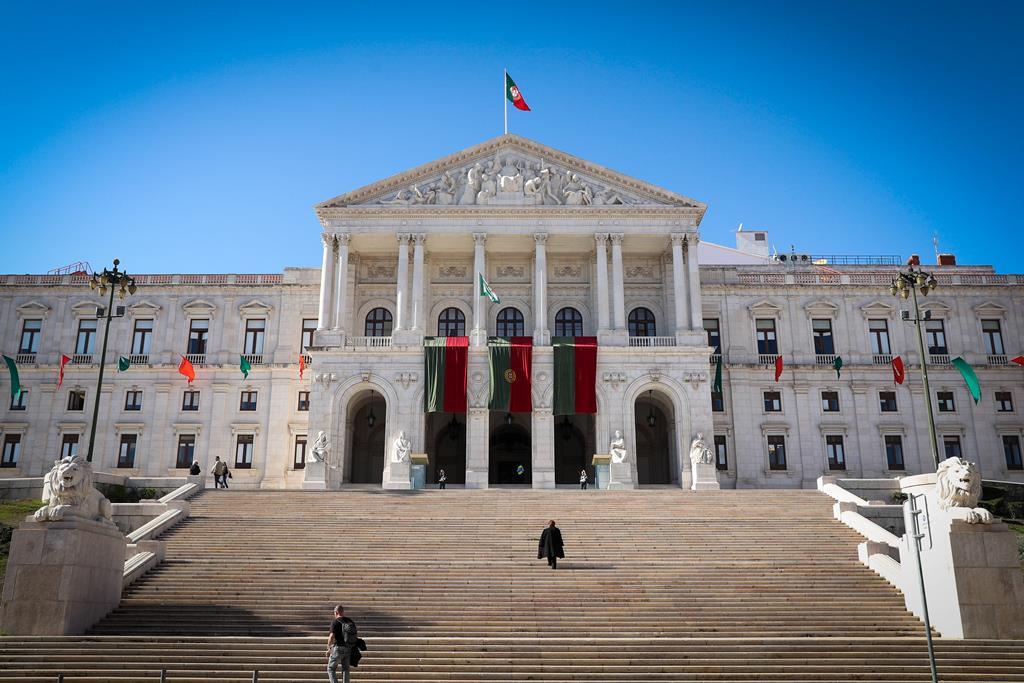 """""""Precisamos de ter, finalmente, estabilidade política com um Governo maioritário"""", diz Paulo Trigo Pereira. Foto: António Cotrim/ Lusa"""