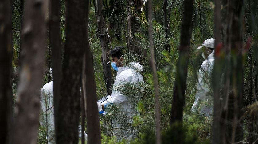 Perícias da PJ no local onde o corpo da criança de nove anos foi encontrado este domingo de manhã. Foto: Carlos Barroso/Lusa