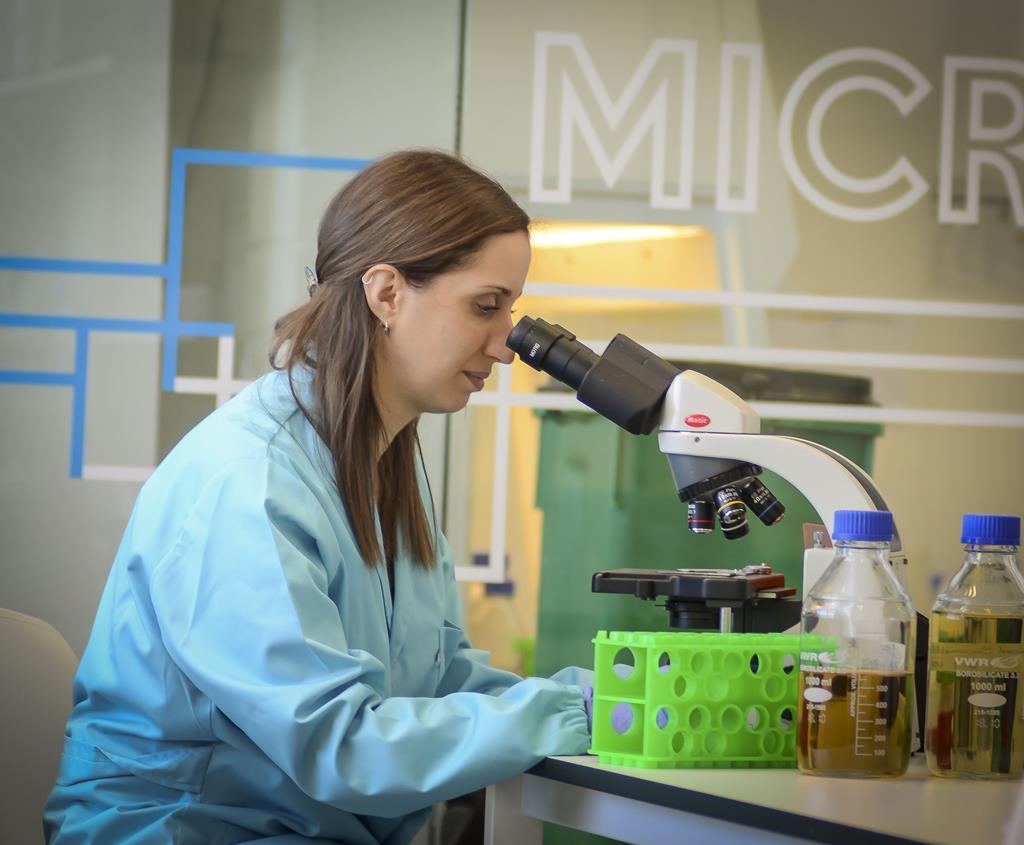 Sem recurso a agulhas ou seringas. A vacina portuguesa estará disponível em 2022. Foto: DR