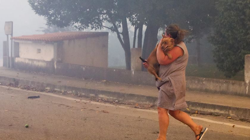 Na Lousã, houve registo de dezenas de feridos por causa das chamas, mas nenhuma morte. Foto: Paulo Novais/Lusa