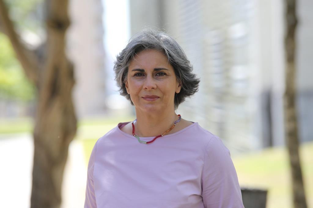 Isabel Santos, deputada europeia do PS, espera que o Parlamento Europeu não reconheça a nova Assembleia Legislativa de Macau se as regras da eleição não sofrerem alterações . Foto: DR