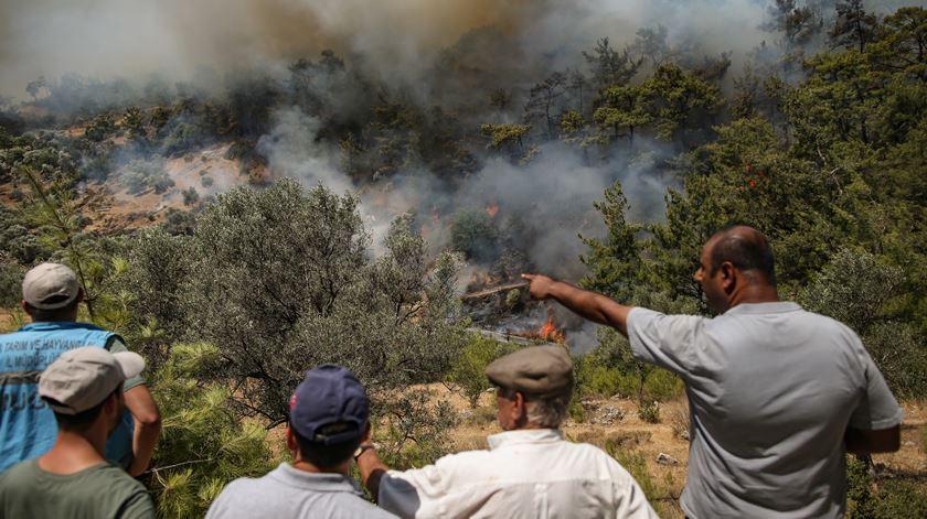 A Turquia regista atualmente os piores incêndios da última década, com quase 95 mil hectares ardidos. Foto: ERDEM SAHIN/ EPA