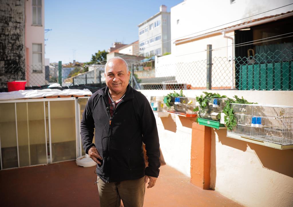 Foi no terraço, junto dos seus canários, que Luiz encontrou um refúgio para o severo confinamento, que o medo do contágio o obrigou a adotar. Foto: Joana Gonçalves/ RR