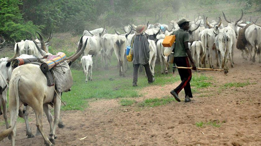 Membros da tribo fulani, na Nigéria. Foto: DR
