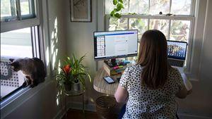 Se a casa ou escritório forem num concelho que recua, teletrabalho continuará a ser obrigatório